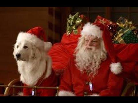 Babbo Natale Zampa.Recensione Zampa E La Magia Del Natale Serietvinside